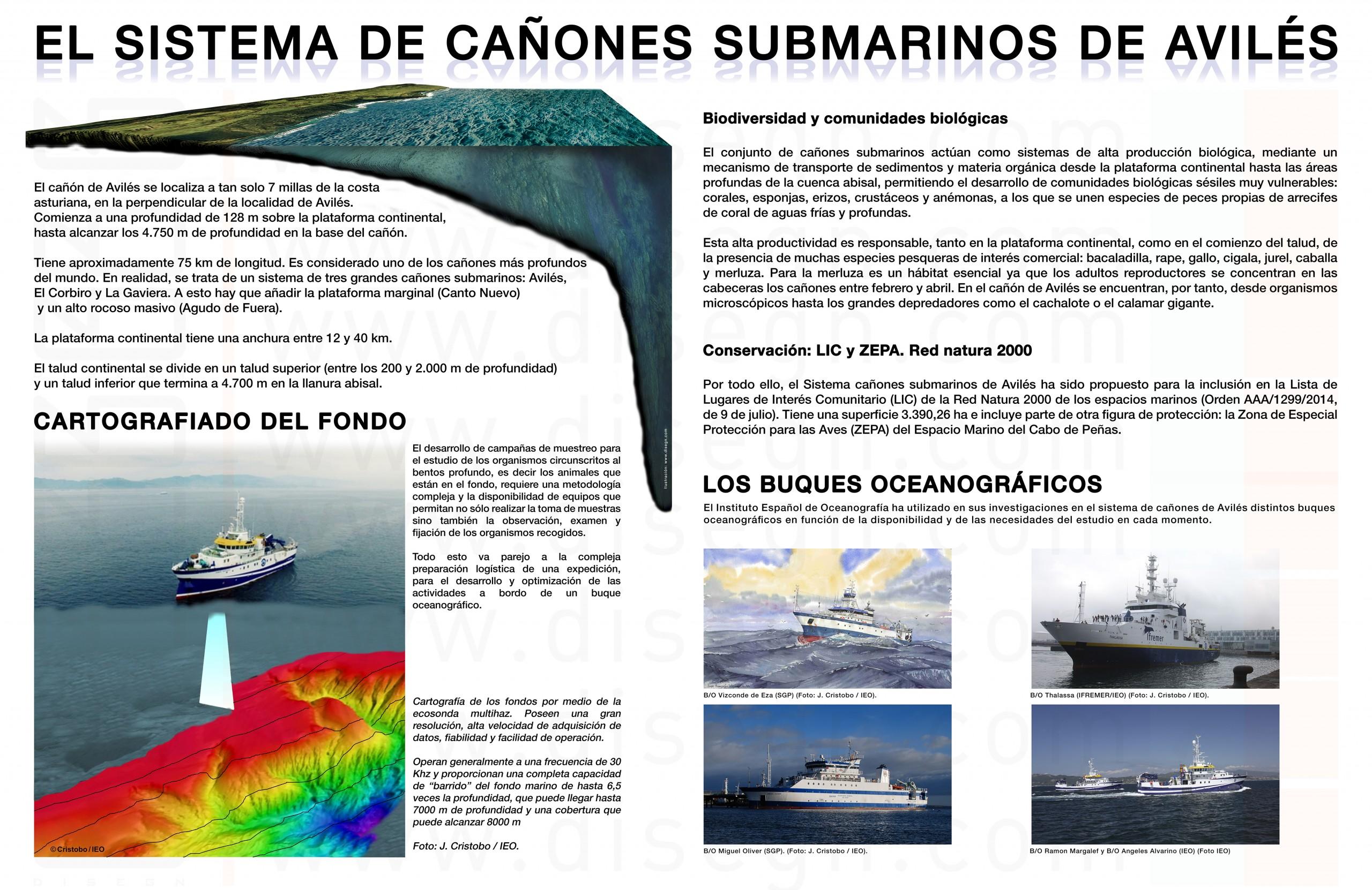 Dirección General de Pesca del Principado de Asturias. Exposición, diseño gráfico, trampantojo y producción sobre el Cañón de Avilés 2016.